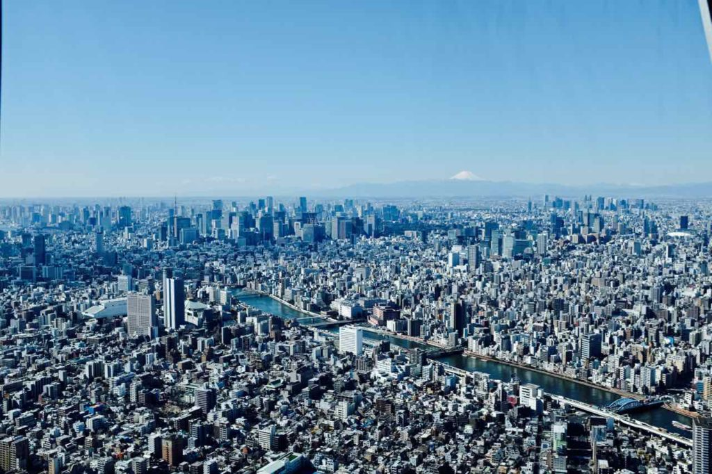 City view with mount fuji